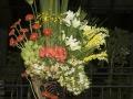 fotografias_2007_20121108_1019389820