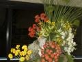 fotografias_2007_20121108_1056322433